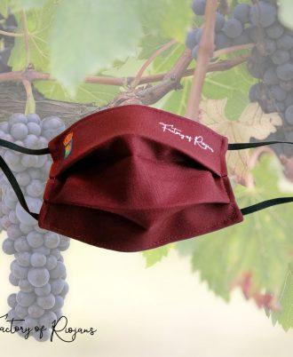 Comprar mascarillas en La Rioja